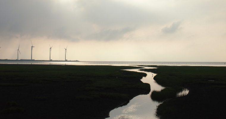 Outskirts of Taichung (5): Gao Mei Shi Di (Gao Mei Wetland)